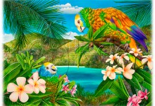 Island Scenes