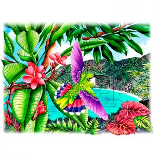 Frangipani Flights Of Fancy by Carolyn Steele