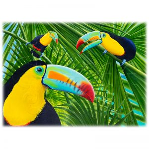 Toucan Threesome by Carolyn Steele