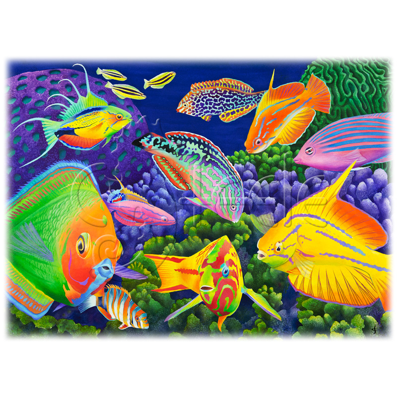 Wrasse Appeal by Carolyn Steele