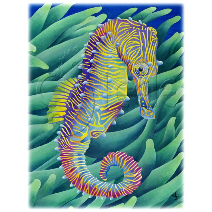 Horse Of A Different Color by Carolyn Steele