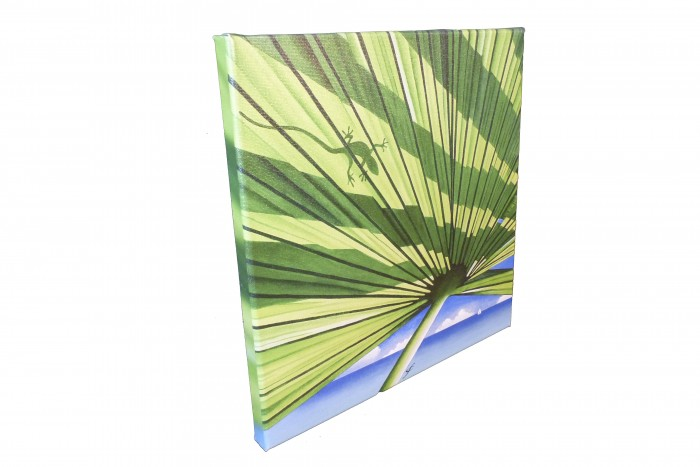 Sample canvas gicleé with gallery wrap available in two sizes: 12x12 (shown) and 15x20. Signed and titled on the back.