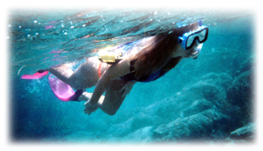 img_c_snorkeling