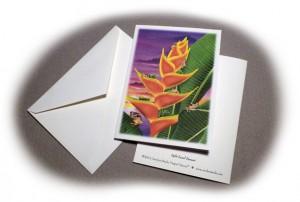 img_notecard_sample