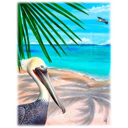 Palm Readings by Carolyn Steele