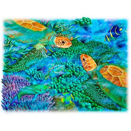 Reef Encounter by Carolyn Steele