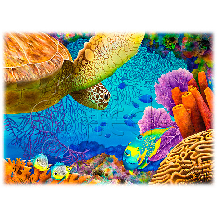 Reef Rendezvous by Carolyn Steele
