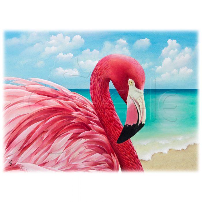 Pretty In Pink by Carolyn Steele