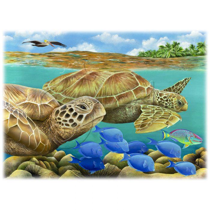 Tandem Turtles by Carolyn Steele